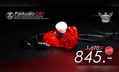 PAIAudio-DR1
